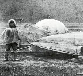 topek-kayak-and-inuit-7543